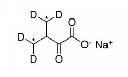 ALPHA-KETOISOVALERIC ACID, SODIUM SALT (DIMETHYL-13C2, 98%; 3-METHYL-D2, 4,4-D2, 98%)  --  0.25 G